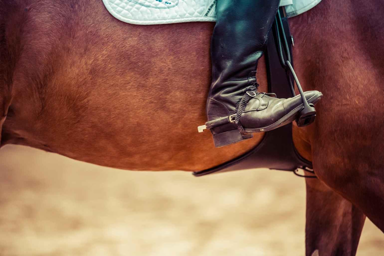 fence jump horse drop